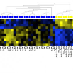 Heatmap Institute Pasteur